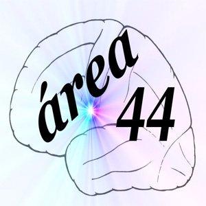 -ÁREA 44- Centro Psicopedagógico